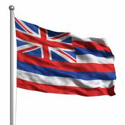 Stock Illustration of flag of hawaii