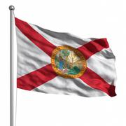 Flag of florida Stock Illustration