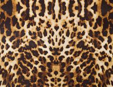 Background with leopard texture Stock Photos