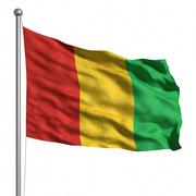 Stock Illustration of flag of guinea