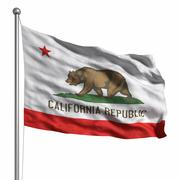 flag of california - stock illustration