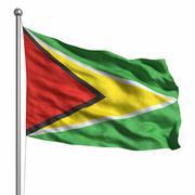 flag of guyana - stock illustration