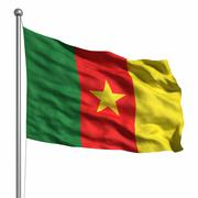 flag of cameroon - stock illustration
