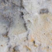 geological organic texture - stock photo