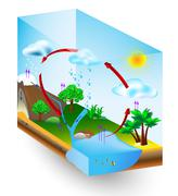 Water cycle. nature. vector diagram Stock Illustration