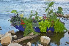 plants in blue row boat - stock photo