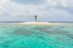 Beautiful one palme tree island, at san blas, panama. central america. caribb - stock photo