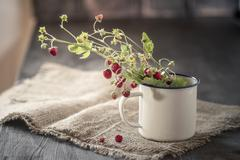 germany, baden wuerttemberg, bouquet of wild strawberries  in enamel cup on r - stock photo