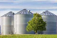 grain tanks - stock photo