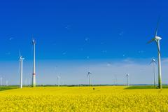 germany, saxony, wind turbines in oilseed rape field - stock illustration