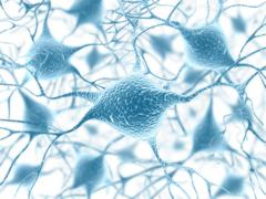 Stock Illustration of Neuron Concept