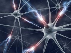 Neuron Concept Piirros