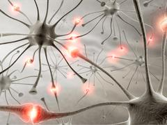 Neuron Concept Stock Illustration