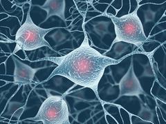 Neuron Concept - stock illustration