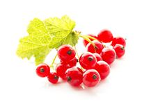 red currants with shrubs on white background, close up - stock photo