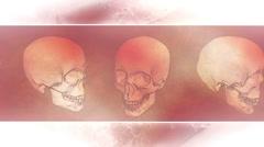 Skulls Framed grunge Spooky Looping Animation Stock Footage
