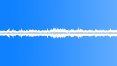 Stock Sound Effects of Starlings flock loop