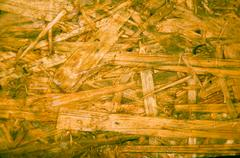the texture of the arboreal slab - stock photo