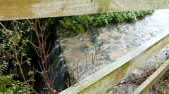 Spring water flows over road path (Stream over road) Stock Footage