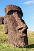 Moai at Rano Raraku, Easter Island - stock photo