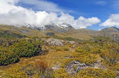 Alpine vegetation below cloud shrouded peaks Stock Photos