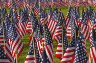 Stock Video Footage of Large display of small American flags