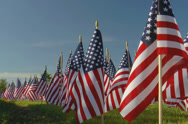 Stock Video Footage of Large display of small American flags against blue sky