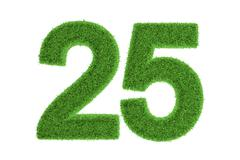 number 25 with a green grass texture - stock illustration