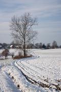 Talvimaisema - 02 Kuvituskuvat