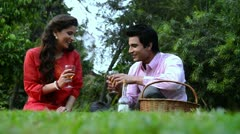 Locked-on shot of a couple toasting with wineglasses Stock Footage