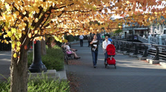Couple carrying baby in the park in the fall - stock footage