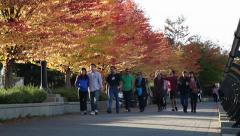 People walking in the fall 05 Stock Footage