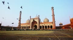 Pan shot of birds flying in front of a mosque Stock Footage