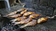 Locked-on shot of fishes on a grill Stock Footage