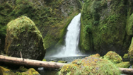 Stock Video Footage of Wahclella Falls-1, Oregon