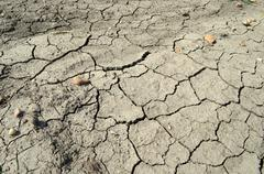 Fissured earth Stock Photos