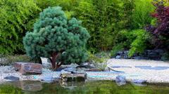Zen garden HD Stock Footage
