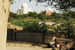 Goat in a mud hut with the mausoleum in the background, Taj Mahal, Agra, Uttar Stock Photos