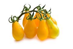 yellow cherry tomatoes - stock photo