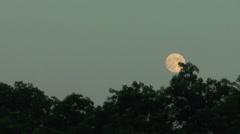 Moonrise.mp4 - stock footage