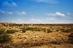 Bush growing at arid landscape with town in background, Jaisalmer, Rajasthan, - stock photo