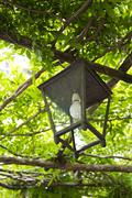 Lantern hanging on a tree, Ravello, Amalfi Coast, Salerno, Campania, Italy - stock photo