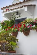 Potted plants in front of a building, Ravello, Amalfi Coast, Salerno, Campania, - stock photo