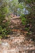 Trees along staircases in a park, Kambala Konda Eco Tourism Park (Majjisrinath), Stock Photos