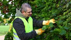 Man with gardener shears near plants episode 2 Stock Footage