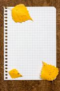 Stock Photo of autumnal leaves on the paper page notebook