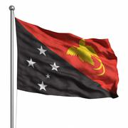 Stock Illustration of flag of papua new guinea