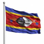 flag of swaziland - stock illustration
