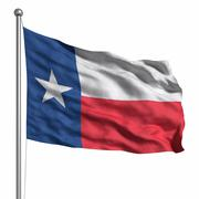 flag of the texas - stock illustration