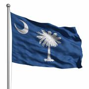 flag of south carolina - stock illustration